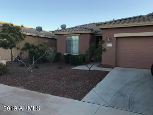 42563 W CANDYLAND Place