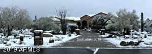 Spring Snow Storm Scottsdale 2019