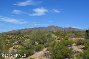 398xx N Cave Creek Road, 0