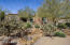 Acre lot with 32 trees and Verdant landscaping throughout