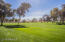 The beautifully maintained golf course!
