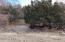 Cheer Creek