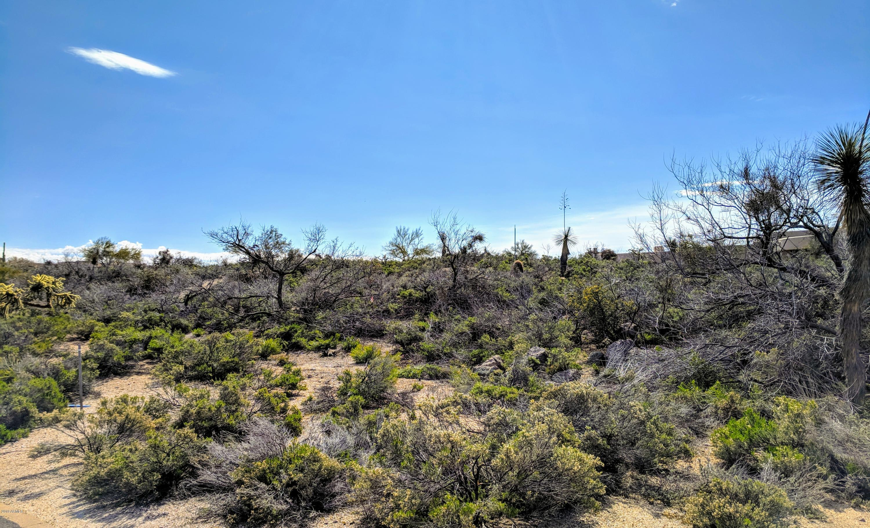 40231 N 107TH Place, Desert Mountain, Arizona
