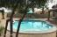 Brand new pool, backs to green belt for privacy with no neighbor behind house