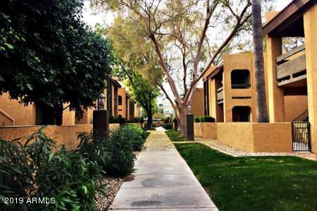 Photo of 8500 E INDIAN SCHOOL Road #115, Scottsdale, AZ 85251