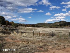 200 E Naegelin Crossing, ---, Young, AZ 85554