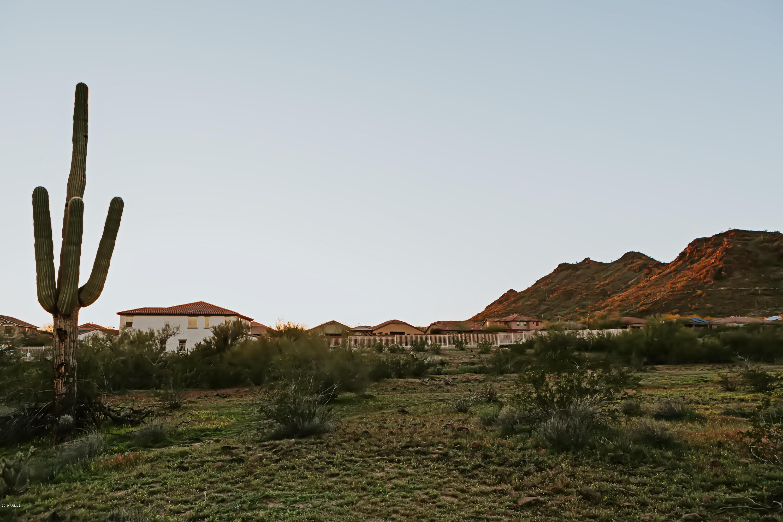 8290 W WHITEHORN Trail, Peoria, Arizona