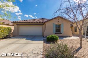 40141 W TAMARA Lane, Maricopa, AZ 85138