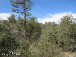 Lot 7 Haigler Creek Estate, 7, Young, AZ 85554