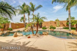 14652 W WINDWARD Avenue, Goodyear, AZ 85395