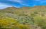 Daisy Mountain Views