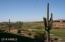 Course Views