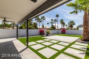 Patio and Backyard