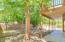 Trees provide lots of shade and privacy for your back yard retreat.