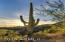 10234 E White Feather Lane, Scottsdale, AZ 85262