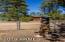 2071 S PINE LAKE Road, Overgaard, AZ 85933