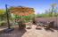 Enjoy those desert views and the open and spacious yard.