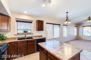 41392 W BRANDT Drive, Maricopa, AZ 85138