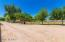 Driveway and Pasture