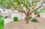 611 E BANELLI Place, Chandler, AZ 85286
