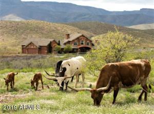 8960 S CUTTING EDGE RANCH Trail, Mayer, AZ 86333