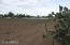 2 Acres Irrigated Land