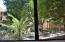 Beautiful Lush Greenery through Kitchen Window