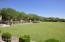 Common area grass area
