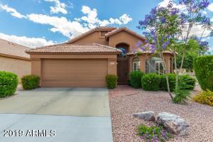 3841 W BARCELONA Drive, Chandler, AZ 85226