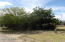 Shade and trees galore throughout property. Front of manufactured home from driveway.