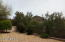 13785 E LUPINE Avenue, Scottsdale, AZ 85259
