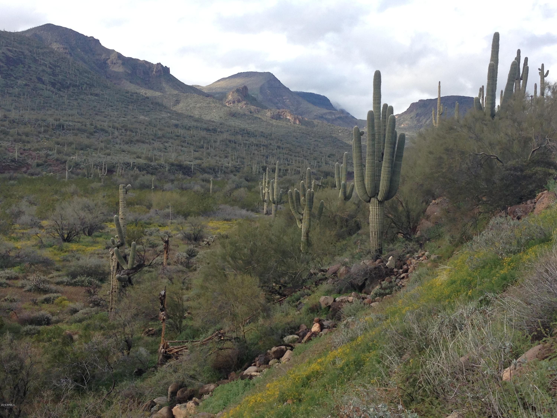 42020 N OLD STAGE Road, Cave Creek, Arizona