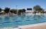 Community Lap Pool