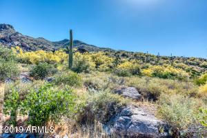 37140 N Carefree Drive, 9, Carefree, AZ 85377