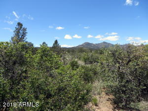 16790 W Blue Sky Drive, 00, Peeples Valley, AZ 86332