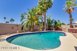 6911 E REDFIELD Road, Scottsdale, AZ 85254