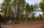 Picnic Area between Cabins