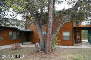 613 W HOMESTEAD Lane, Christopher Creek, AZ 85541