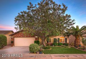 4945 E SHAPINSAY Drive, San Tan Valley, AZ 85140