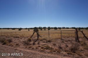 5184 COYOTE Trail