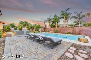 961 W MACAW Drive, Chandler, AZ 85286