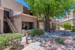 4554 E PARADISE VILLAGE Parkway, 117, Phoenix, AZ 85032
