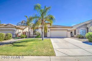 17 E Macaw Court, San Tan Valley, AZ 85143