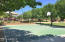 Community Park includes a Basketball Court and Sand Volleyball!