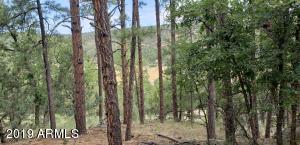 97XX W Juniper Road, -, Pine, AZ 85544