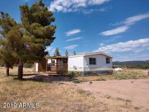 298 N GHOSTRIDER Road, Young, AZ 85554