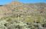 43222 N 79th Street, Cave Creek, AZ 85331