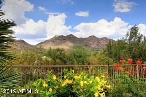 6524 E AMBER SUN Drive, Scottsdale, AZ 85266