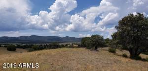 290 N Navajo Trail, 3, Young, AZ 85554
