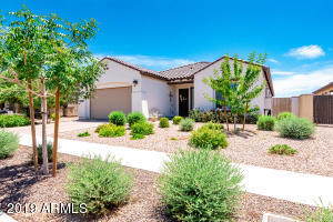 14387 W WINDROSE Drive, Surprise, AZ 85379